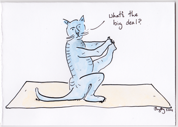 cat yoga - oc bday 2014